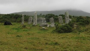 wild stone circle