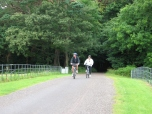 Outside Killarney on the approach to Muckross House