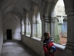 The youngest member of our group explores the ruins of Muckross Abbey.