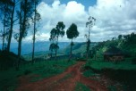 Western lip of the Great Rift Valley, near Iten, Kenya (1992).