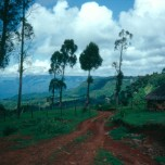 Western lip of the Great Rift Valley, near Iten, Kenya (1992).