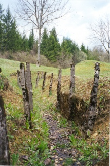 World War I trenches are still visible at Verdun.